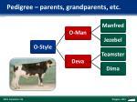 pedigree parents grandparents etc