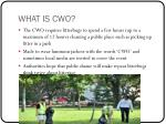 what is cwo