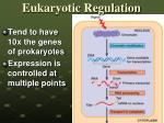 eukaryotic regulation