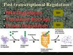 post transcriptional regulation1