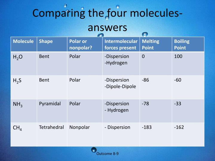 Comparing the four molecules- answers