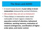 the brain and adhd1