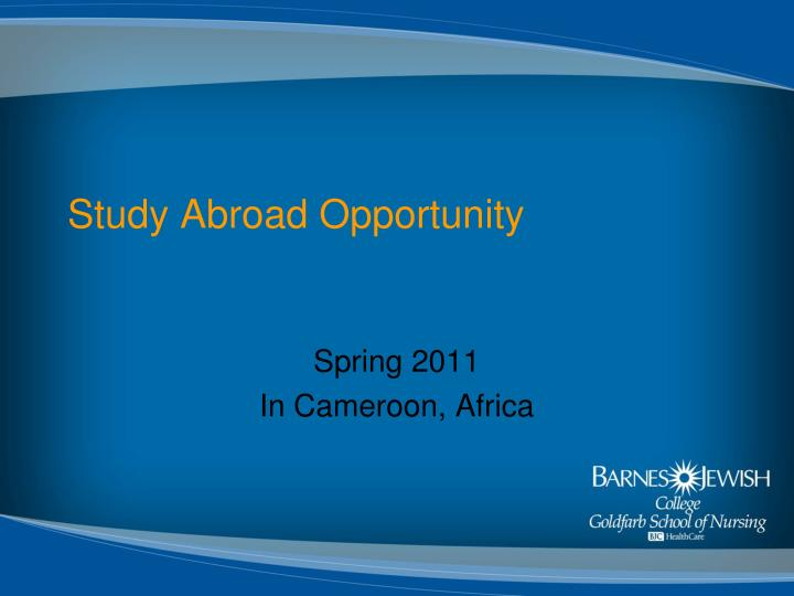 study abroad opportunity n.