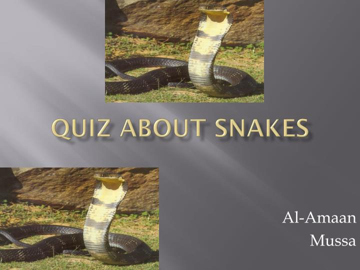 Quiz about snakes