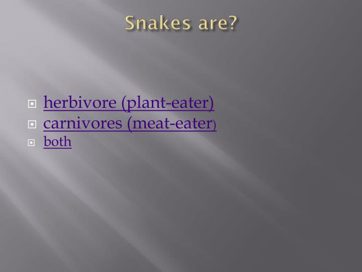 Snakes are?