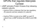 gpcrs that regulate adenylate cyclase3