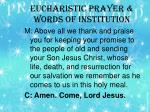 eucharistic prayer words of institution1