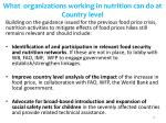 what organizations working in nutrition can do at country level