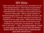 niv bible