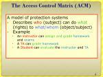 the access control matrix acm