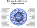 esempio di ambiente di un organizzazione
