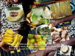f foods