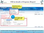 fill in details of expense report
