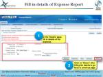 fill in details of expense report1