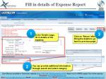 fill in details of expense report2