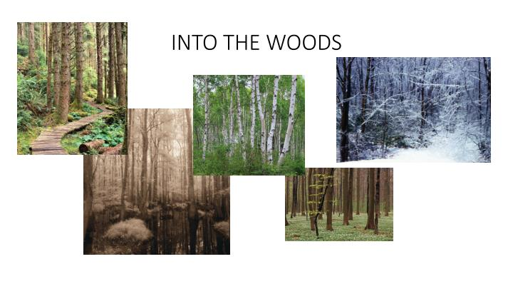 into the woods n.