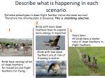 describe what is happening in each scenario5