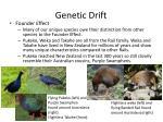 genetic drift10