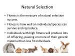 natural selection5