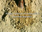 if waste is disposed on a porous soil it penetrates downward