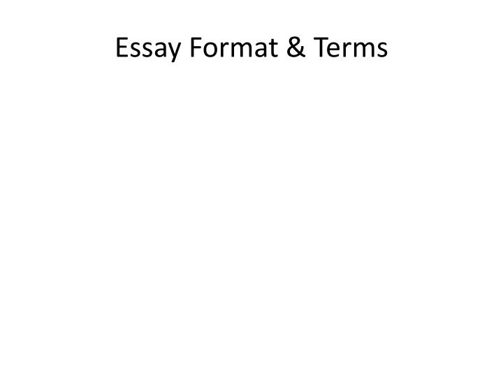 essay format terms n.