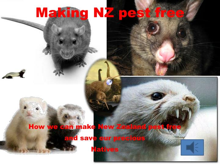 making nz pest free n.