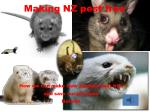 making nz pest free