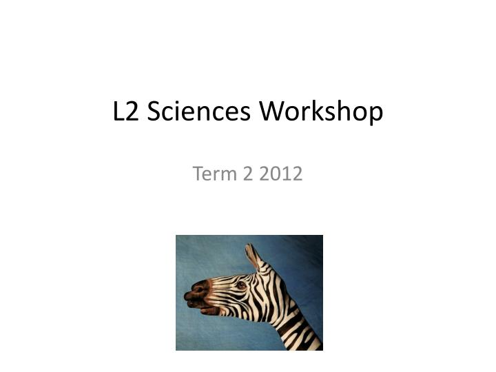 l2 sciences workshop n.