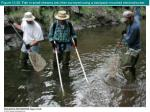 figure 10 28 fish in small streams are often surveyed using a backpack mounted electroshocker