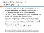 natural gas pricing 1 1