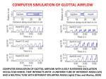 computer simulation of glottal airflow