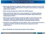 natural gas distribution sector