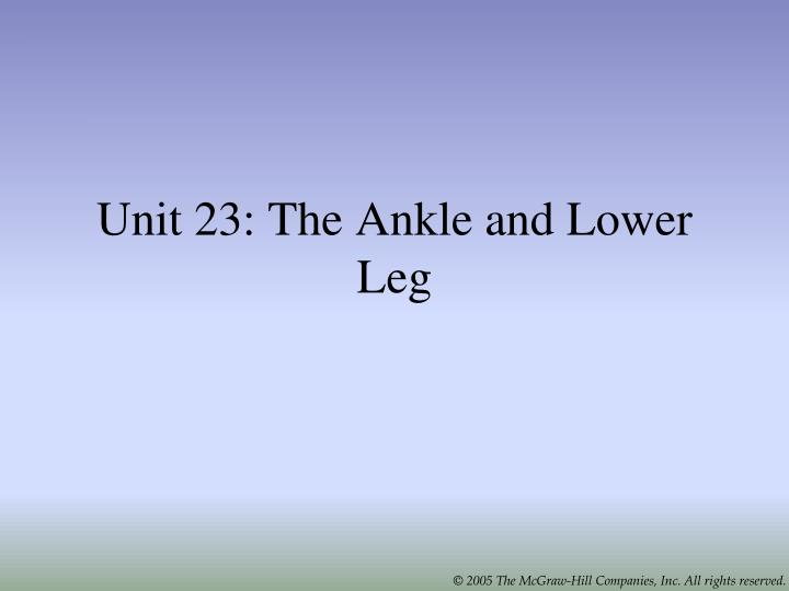 unit 23 the ankle and lower leg n.