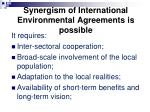 synergism of international e nvironmental a greements is possible
