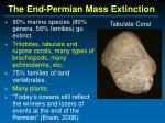 the end permian mass extinction