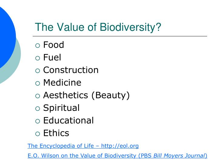 The Value of Biodiversity?