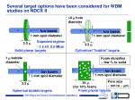 several target options have been considered for wdm studies on ndcx ii
