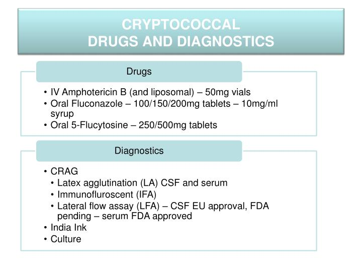 Cryptococcal drugs and diagnostics
