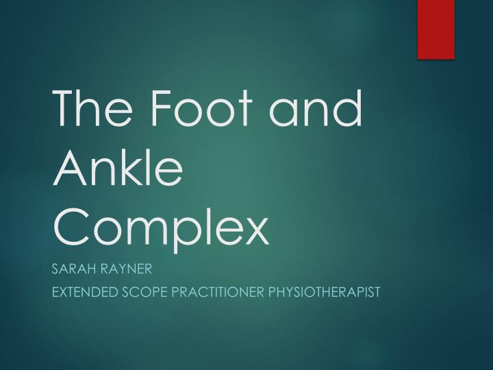 the foot and ankle complex n.