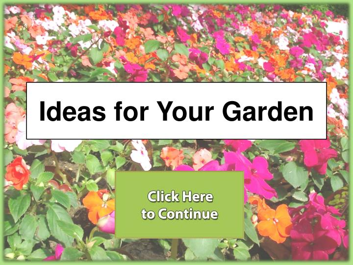 ideas for your garden n.