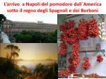 l arrivo a n apoli del pomodoro dall america sotto il regno degli spagnoli e dei borboni