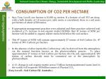 consumption of co2 per hectare