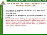 gap in productivity between average and optimum production