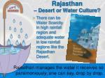 rajasthan desert or water culture