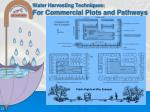 water harvesting techniques for commercial plots and pathways
