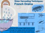 water harvesting techniques french drains