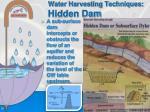water harvesting techniques hidden dam