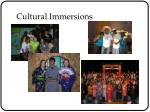 cultural immersions
