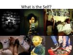 what is the self