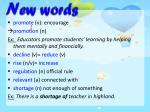 n ew words1